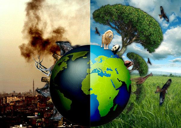 ekolojik cevre