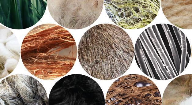 tekstil lifleri