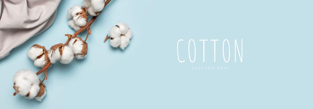 pamuk cotton